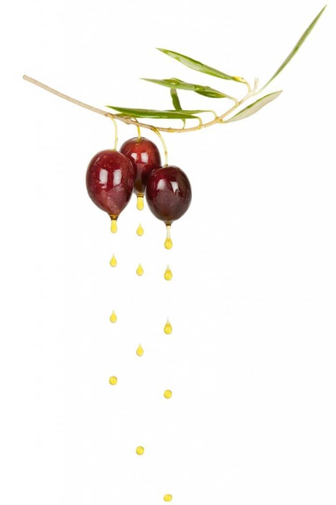 Illustration d'olives et huile d'olive vierge extra - Afidol