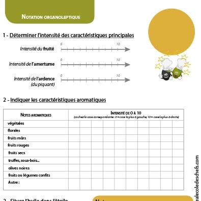 Fiche vierge de dégustation pour élève : notation organoleptique de l'intensité des huiles d'olive