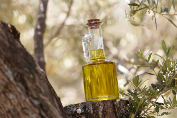 Illustration bouteille d'huile d'olive dans un olivier