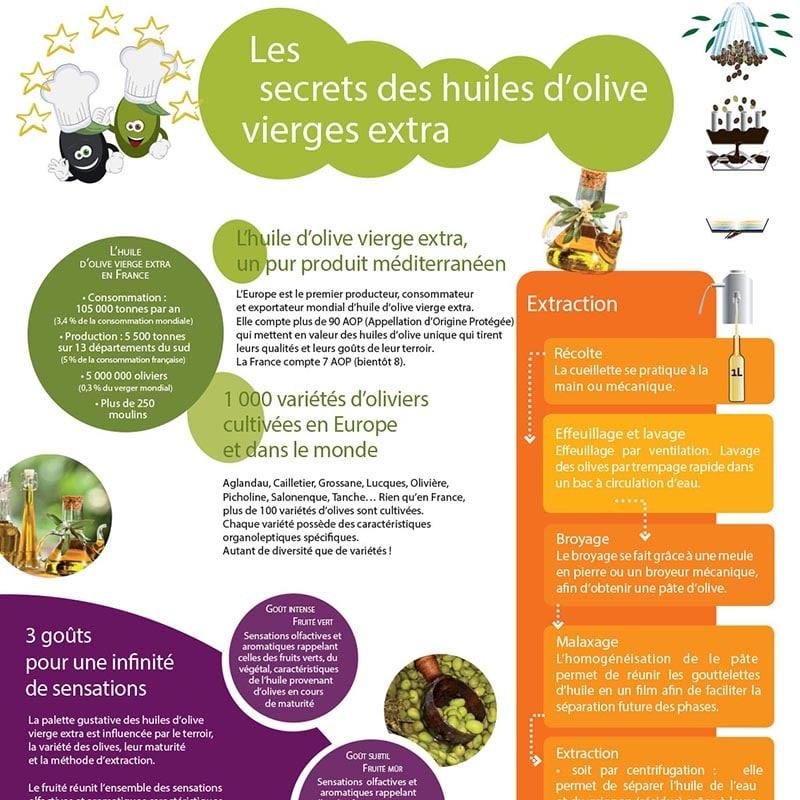 Dépliant triptyque sur les huiles d'olive du Midi de la France : Terroirs et plaisirs
