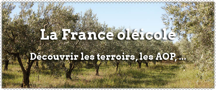 france et son territoire oleicole